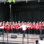 Jugendfest Rheinfelden - Die Stärnefründe und Stärnekids